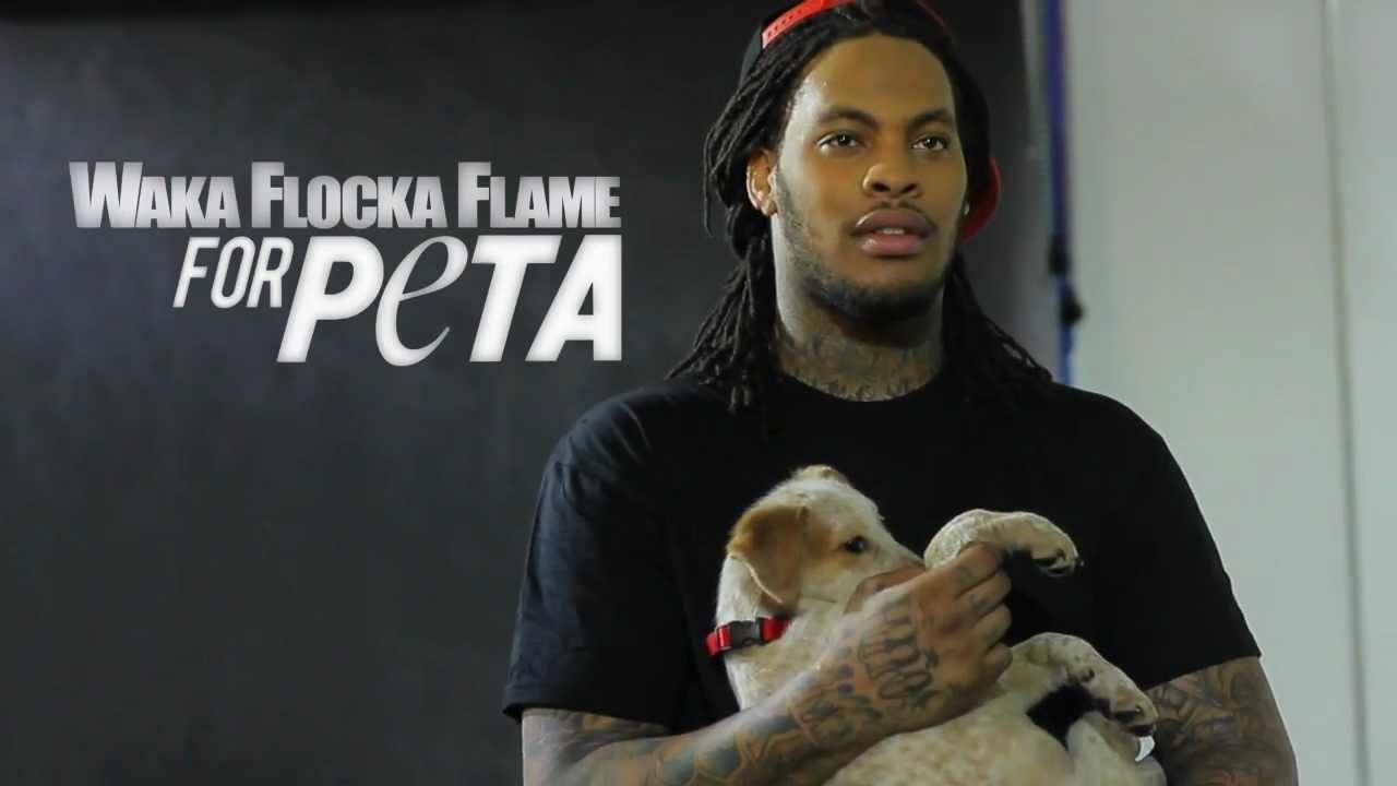 Waka Flocka Flame Named peta2's Hottest Male Vegetarian Celebrity [Video Alert]