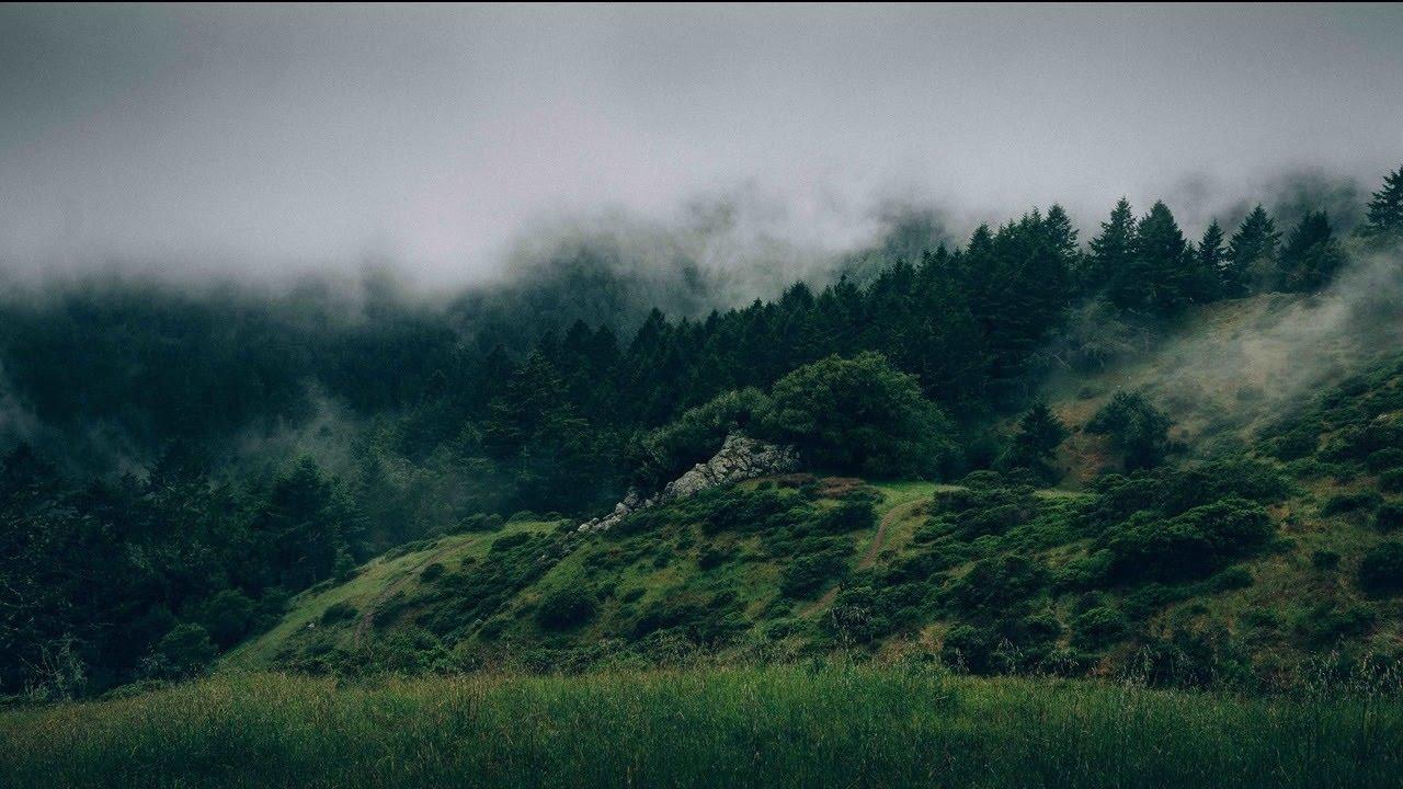 #MusicMonday Jay Electronica Drops New Album, 'Exhibit A' via YouTube? [Listen]